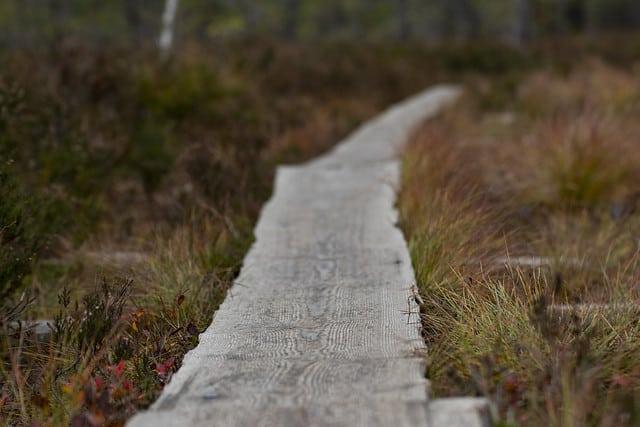 Lähi- ja luontomatkailua kehitetään yhteistyössä Varsinais-Suomen reitistöpäivillä