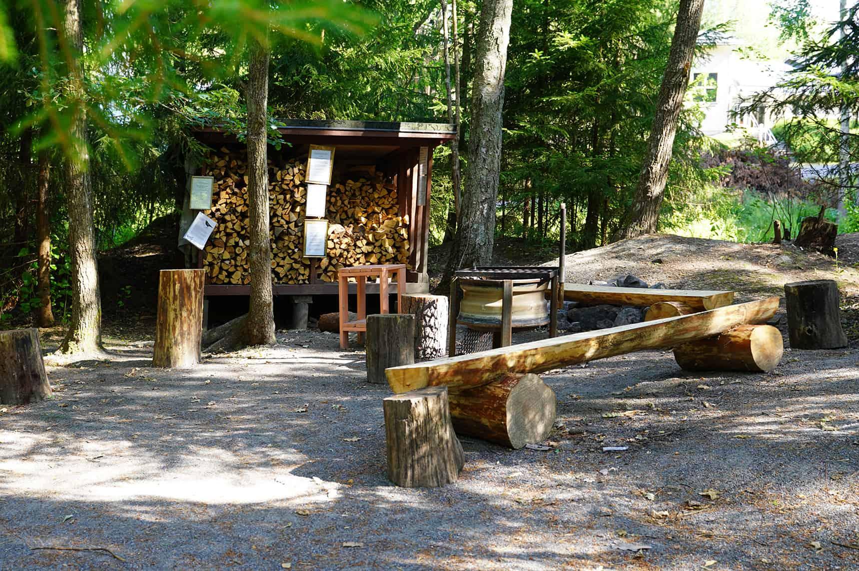 Nuotiopaikka, jonka takana puuvaja.