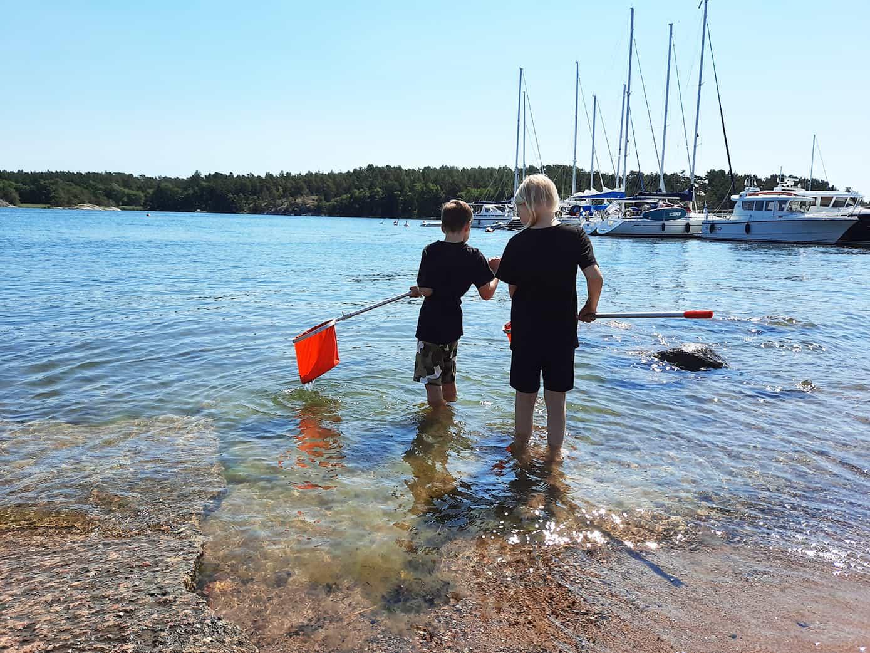 Barnen studerar ivrigt läget i Östersjön!
