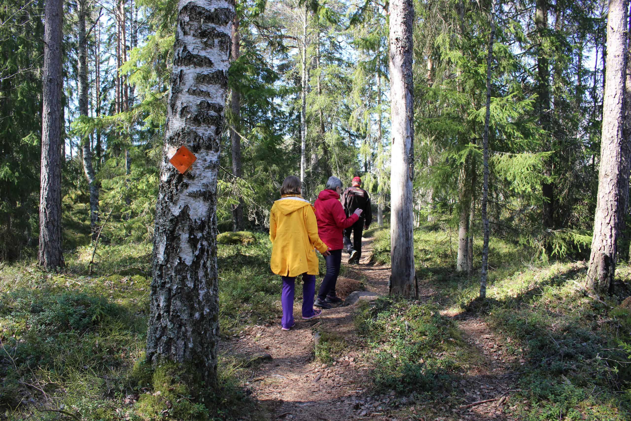 Retkeilijöitä kävelemässä Tummamäen luontopolulla