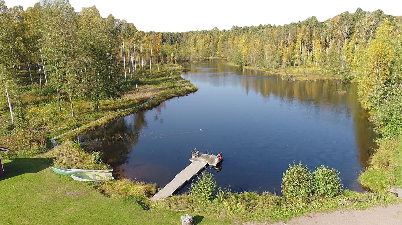 A three-year clearing bee saved Millspring in Oripää