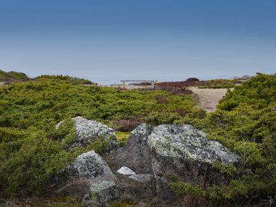 Maisemakuva Jurmosta, penkki meren äärellä.