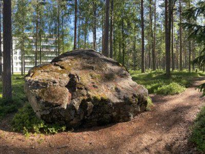 Kuva metsäpolusta ja kivestä, joiden takana pilkottaa Paimion parantola.