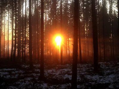 Välkommen till webbinariet Egentliga Finlands Intelligenta landsbygd! Aktualiteter och nya synpunkter på landsbygdsutveckling att vänta