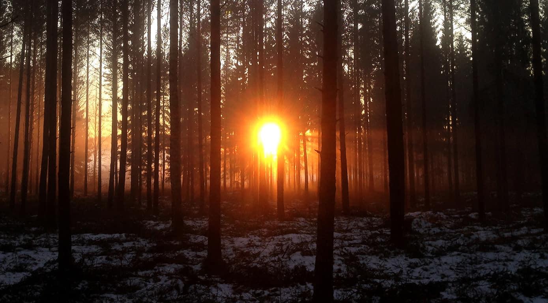 Tervetuloa Varsinais-Suomen Älykkäät maaseudut -webinaariin! Luvassa ajankohtaista asiaa ja uusia näkökulmia maaseudun kehittämiseen