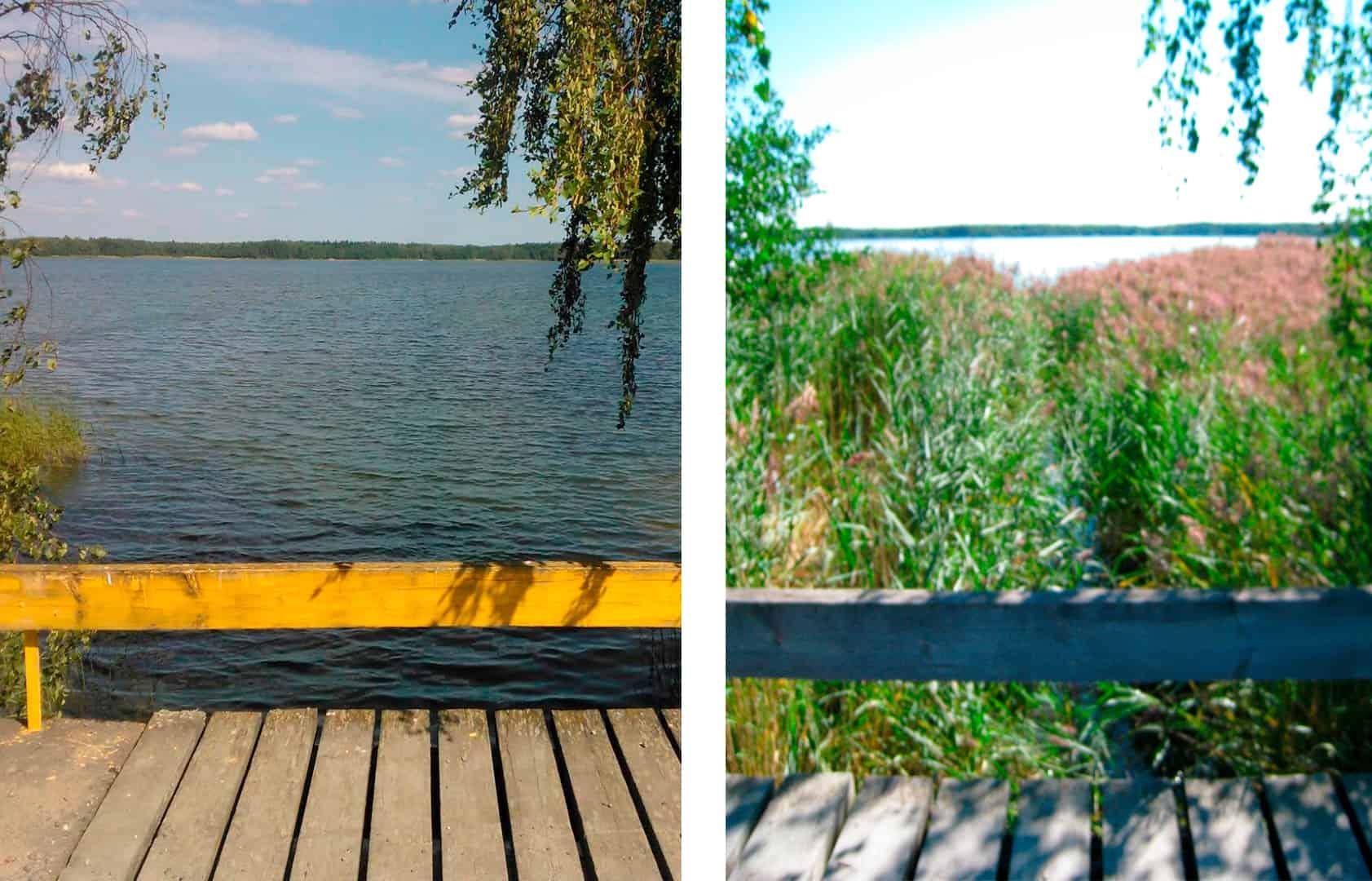 Kaksi kuvaa vesialueesta. Toisessa on paljon kaislaa, toisessa ei yhtään.