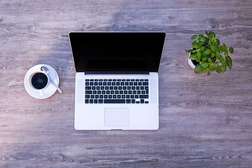 Kannettava tietokone, kahvikuppi ja kasvi pöydällä.