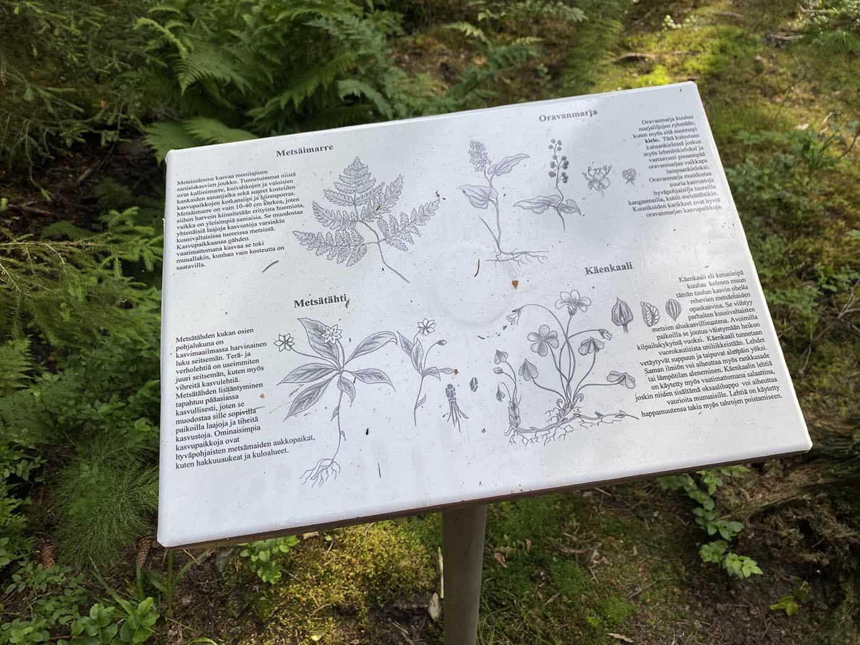 Metallikyltti, jossa esitellään alueen kasveja.