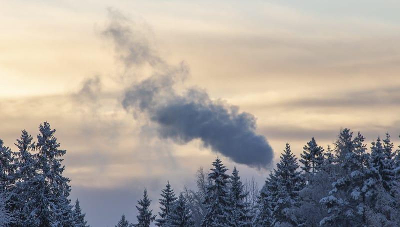 Voiko yhdistys olla ekologisempi? EkoTeko-hanke auttaa yhdistyksiä ekologisuudessa!